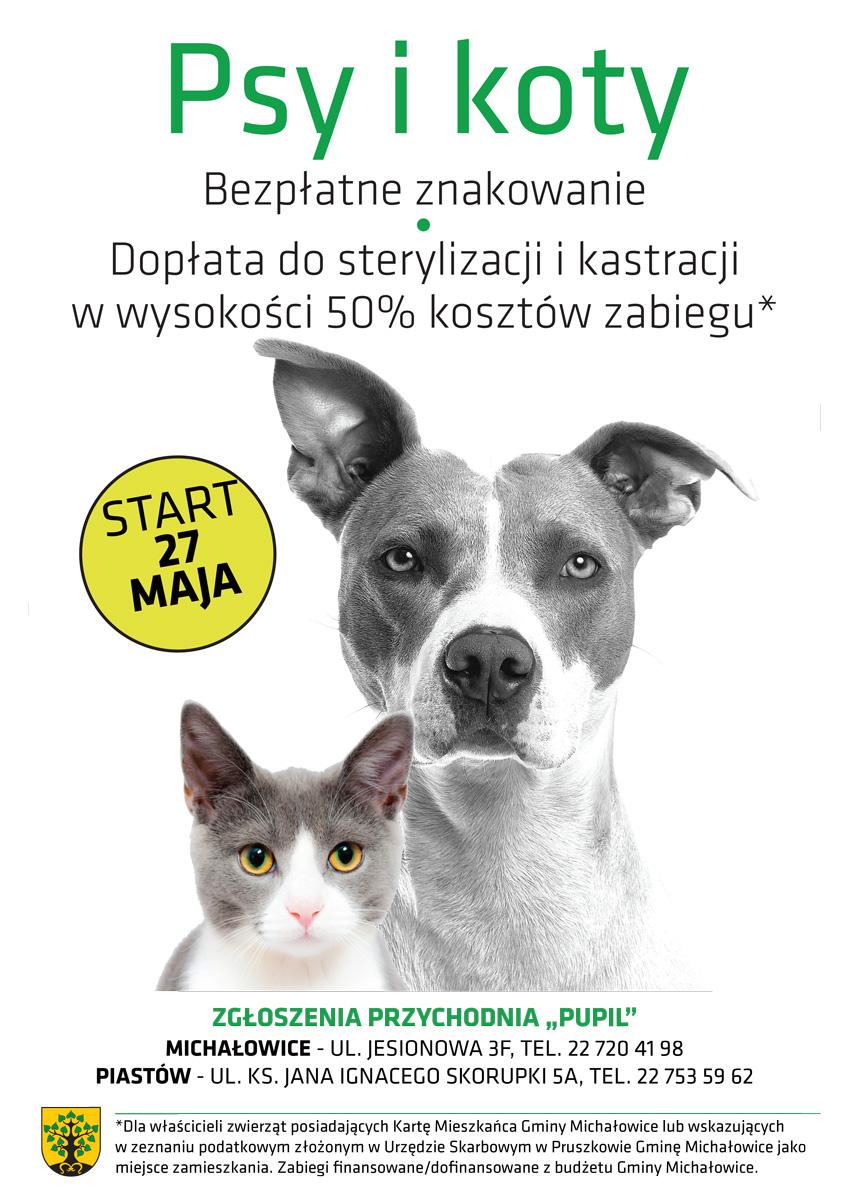 sterylizacja iznakowanie psów ikotów